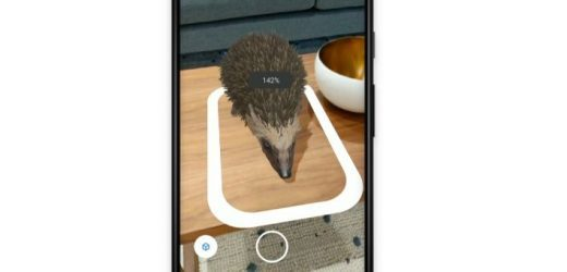 Google AR brings 3D animals into users' homes